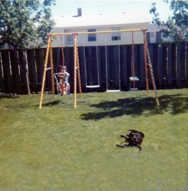 Me on the swingset and Peanut in the grass, 1973